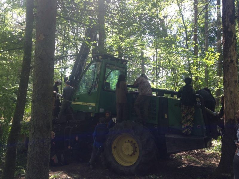 10th blockade in the Bialowieza Forest District