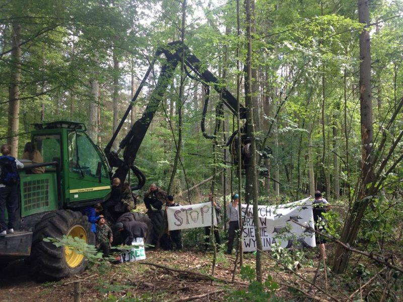 10th blockade – violent forest guards and the harvester's engine on