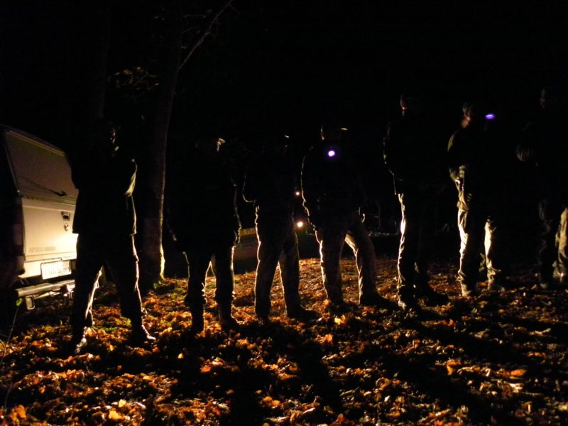 In Warsaw – a man on fire, in the Forest – violent actions against activists