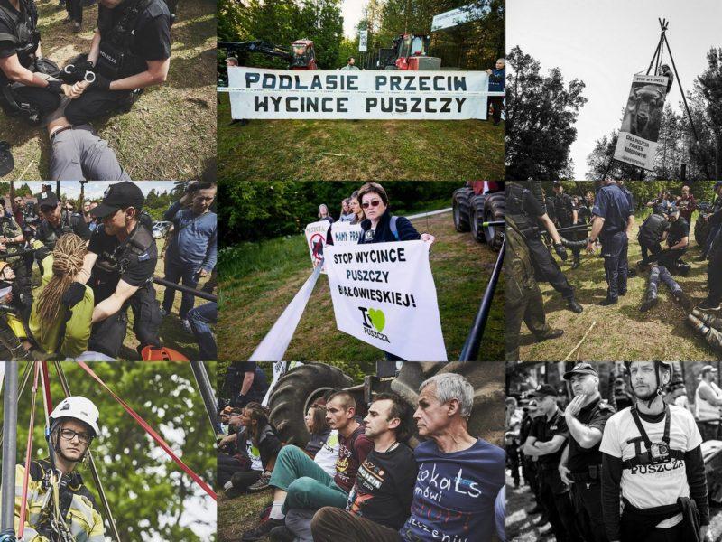 Activists found innocent by the court in Hajnówka