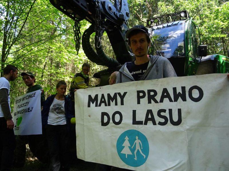 5th blockade of heavy timber-harvesting machines