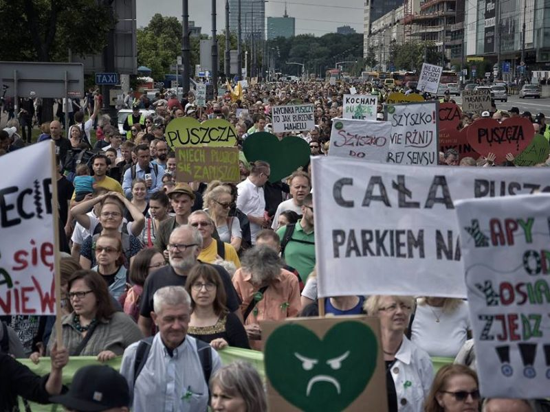 March for the Forest in Warsaw