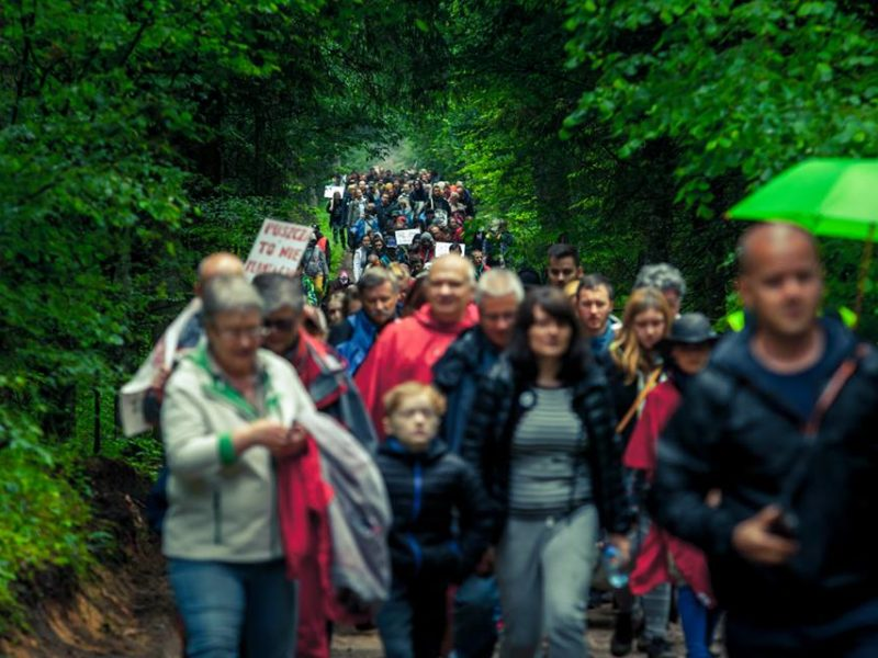 Marching together for the Forest