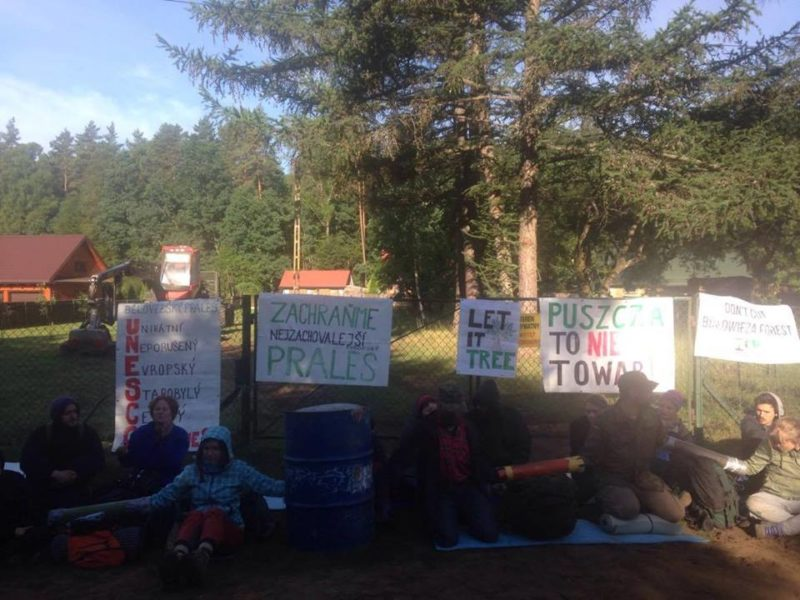 7th blockade in the Forest – our heritage is not for sale!