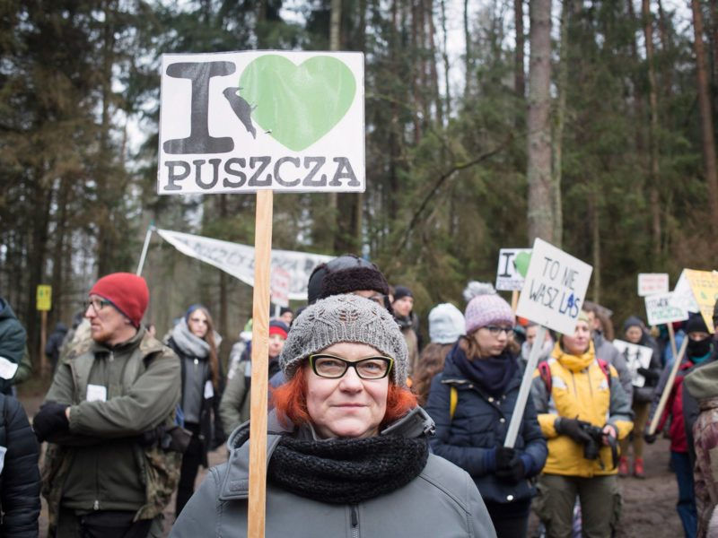 March for the Forest